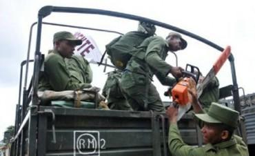 CUBA: RENACE LENTAMENTE LUEGO DEL PASO DEL HURACÁN IRMA